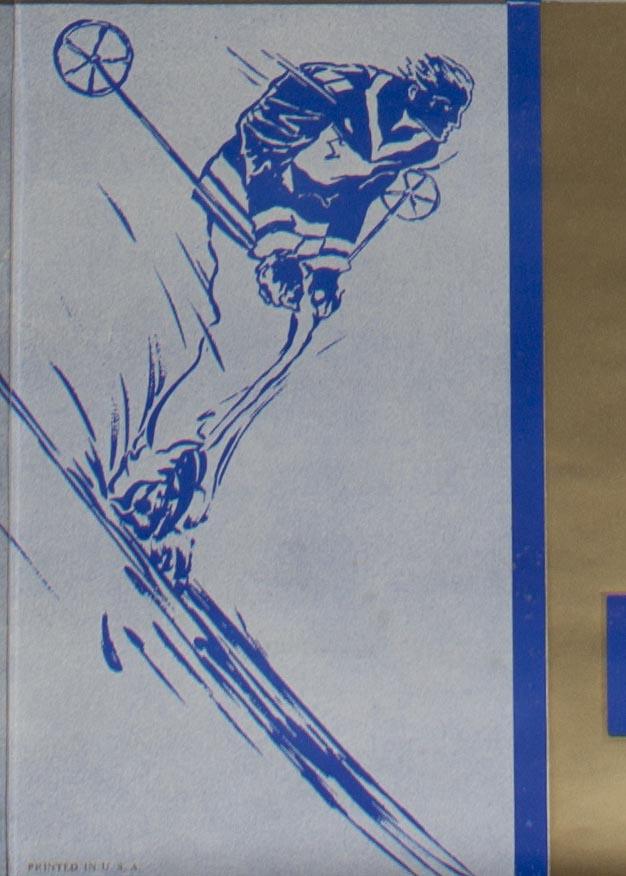 Skier detail